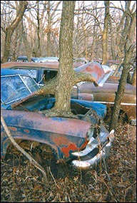 db_09-Autofriedhof-Becks-Barn-b1