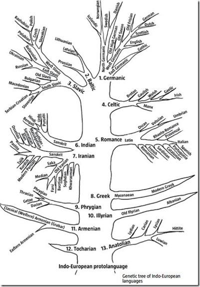 arian tree