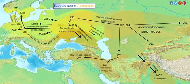 R1a  Y-DNA  - Eupedia