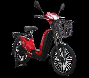 bicicleta electrica zt-01-453x397
